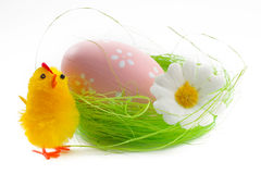 Pulcino ed uovo di Pasqua Immagini Stock