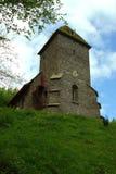 Puledro del monastero Immagini Stock Libere da Diritti