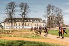 Pulegge tendirici & cavallo da corsa di addestramento di mattina che ritornano alla stalla del HQ fotografia stock