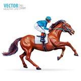 Puleggia tenditrice sul cavallo campione Cavallo Racing hippodrome racetrack Salti la pista Corsa di cavalli Cavallo di corsa che Fotografia Stock Libera da Diritti