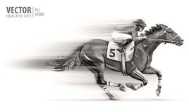 Puleggia tenditrice sul cavallo di corsa campione hippodrome racetrack Corsa di cavalli Illustrazione di vettore derby velocità v fotografie stock libere da diritti