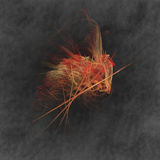 pulga Imagen de archivo libre de regalías