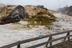 Pulgar del ` s del diablo en Mammoth Hot Springs Fotos de archivo