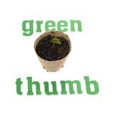 Pulgar verde Imagen de archivo libre de regalías
