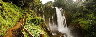Pulhapanzak Waterfall in Honduras. Jungle setting stock image