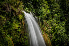 Pulhapanzakwaterval in Honduras - 1 Stock Afbeeldingen
