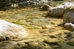 Pulisca il fiume della montagna Immagine Stock