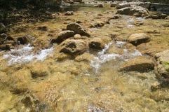 Pulisca il fiume della montagna Fotografia Stock