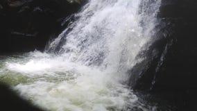 Pulisca il fiume fresco della montagna che entra fra le rocce nella cascata Movimento lento 1920x1080 video d archivio