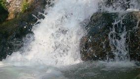 Pulisca il fiume fresco della montagna che entra fra le rocce nella cascata Movimento lento 1920x1080 stock footage