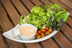 Pulisca l'insalata Immagini Stock Libere da Diritti