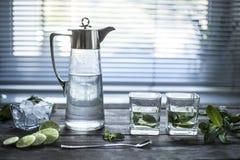 Pulisca la chiara acqua con le foglie di menta e del ghiaccio Primo piano Immagine Stock