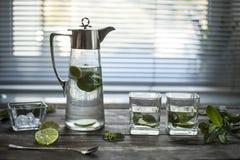 Pulisca la chiara acqua con le foglie di menta e del ghiaccio Primo piano Fotografie Stock Libere da Diritti