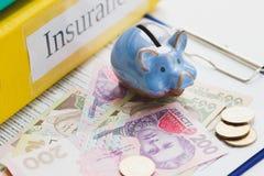 Pulisca la forma, il porcellino salvadanaio ed i soldi di assicurazione Fotografia Stock