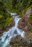 Pulisca la molla della torrente montano in Zakopane, Polonia Fotografia Stock