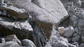 Pulito, scorrimenti dell'acqua beventi della montagna giù da una grande pietra archivi video