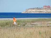 Pulitore sulla spiaggia fotografie stock libere da diritti