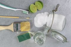 Pulitori naturali ecologici, prodotti di pulizia Pulizia verde casalinga sul fondo grigio fotografia stock