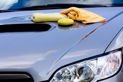 Pulitura dell'automobile Fotografie Stock Libere da Diritti