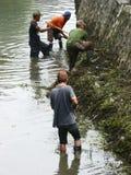 Pulizia del fiume Fotografia Stock Libera da Diritti