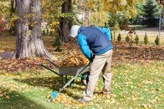 Pulizia del giardino prima dell'autunno fotografia stock