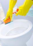 Pulizia del WC Immagini Stock