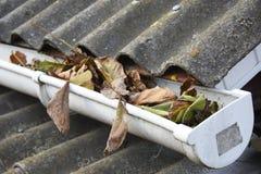 Pulizia della grondaia della pioggia dalle foglie in autunno Pulisca le vostre grondaie prima che ripuliscano il vostro portafogl Immagine Stock