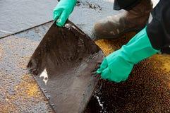 Pulizia di caduta di olio su area di lavoro il pericolo per la natura Immagine Stock