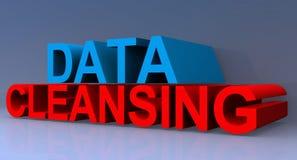 Pulizia di dati illustrazione vettoriale