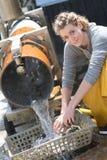 Pulizia trasformando le ostriche dei crostacei Fotografie Stock Libere da Diritti