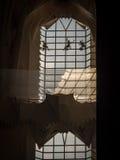 Pulizia Windows di una cattedrale fotografia stock