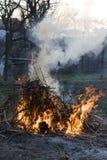 Pulizie di primavera Fotografia Stock Libera da Diritti