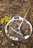 Pulizie di primavera in un giardino Fotografia Stock