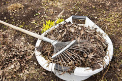 Pulizie di primavera in un orto domestico Immagini Stock