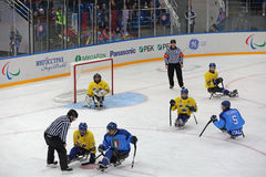 Pulkahockey Arkivbild