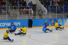 Pulkahockey Royaltyfria Bilder