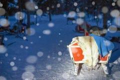 Pulkor i ren brukar i Lapland Finland med nattsnöfall Royaltyfria Foton