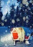 Pulkor på renen brukar i Lapland Finland med nattsnöfall Fotografering för Bildbyråer