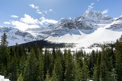 Crowfoot Glacier Pull Off 02 royalty free stock photo