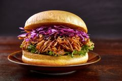 Pulled pork burger Stock Photography