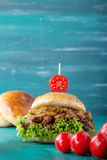 Pulled pork burger royalty free stock image