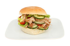 Pulled pork and salad roll Royalty Free Stock Photos