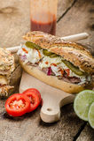 Pulled pork sandwich panini Stock Images