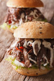 Pulled pork sandwich with vegetables and sauce close-up. Vertica Stock Images