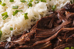 Pulled pork with sauerkraut macro. horizontal background Royalty Free Stock Photo