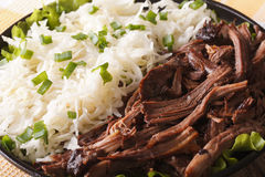Pulled pork with sauerkraut on a plate macro. horizontal Royalty Free Stock Photography