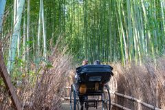Pulled rickshaw riding tourists through a bamboo forest path at Arashiyama, Kyoto stock photos