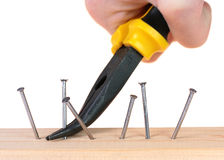 Pulling a nail with pliers. Royalty Free Stock Photo