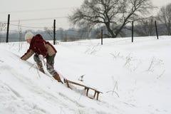 Pulling sleds Stock Photo