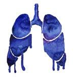 Pulmões azuis da aquarela com borrões brilhantes da pintura ilustração do vetor